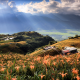 nature, landscape, taiwan, hill, sky, valley, clouds, sun rays, flowers, daylily wallpaper