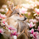 wolf, magnolia, animals, flowers, nature wallpaper