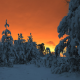 winter fairy tale, winter, forest, snow, winter forest, pine tree, tree, nature, sunset wallpaper