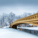 new york, city, winter, park, central park, bridge, snow wallpaper