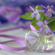 flowers, violet, ribbon, nature wallpaper