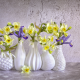 vase, flowers, daffodils, snowdrops, irises, spring wallpaper
