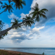 Sri Lanka, nature, landscape, palm trees, beach, tropical, sea, clouds, sunrise, water wallpaper