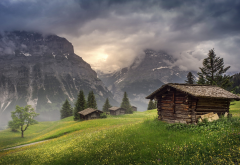 Switzerland, Grindelwald, nature, landscape, mountain, huts, clouds, trees, grass, sunrise wallpaper