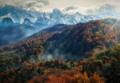 mountains, forest, fall, mist, trees, nature, landscape, Alps, snowy peak, clouds, sun rays, morning wallpaper