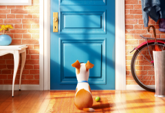 The Secret Life of Pets, dof, cartoons, movies wallpaper