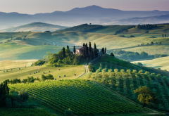 toscana, Italy, landscape, nature, hill, field wallpaper