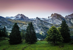 The Aravis, Aravis, mountains, tree, France, grass, nature, pine tree wallpaper
