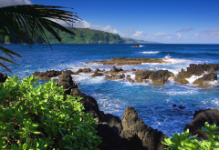hawaii, sea, ocean, coast, tropics, usa, nature wallpaper