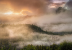 alaska, nature, mist, forest, clouds, sunrise, mountains, tree wallpaper