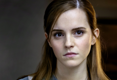 Emma Watson, women, actress, face wallpaper