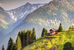 snowy peak, switzerland, tree, house, mountains, field, grass, nature, landscape wallpaper