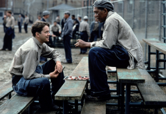 the shawshank redemption, morgan freeman, ellis boyd redding, red, movies, tim robbins, andy dufresn wallpaper