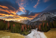 fall, forest, autumn, nature, landscape, sunset, mountains, sky, clouds, pine tree wallpaper