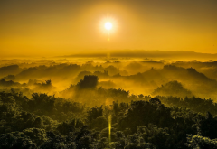 hill, forest, jungles, fog, sky, sun, nature wallpaper
