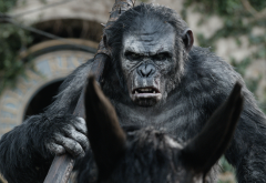 dawn of the planet of the apes, caesar, monkey, animals, movies wallpaper