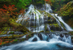 panther creek falls, gifford pinchot national forest, forest, tree, waterfall, nature wallpaper