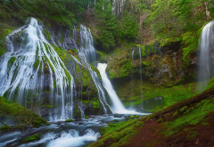 panther creek falls, gifford pinchot national forest, forest, waterfall, nature wallpaper