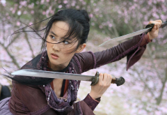 liu yifei, golden sparrow, the chinatown girl, the forbidden kingdom, asian, sword, movies, women, brunette, martial arts wallpaper
