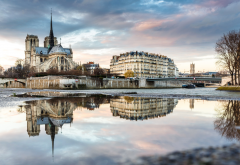 notre dame de paris, notre-dame, paris, france, seine, river, reflections, city wallpaper