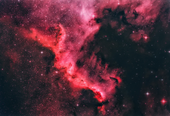 north america nebula, space, stars, nebula wallpaper
