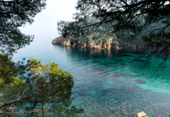 costa brava, girona, spain, sea, rocks, branch, bay, nature wallpaper
