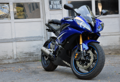 yamaha r6 black and gold, yamaha r6, motorcycles, yamaha, bike wallpaper