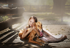 porch, sunlight, girl, smile, girl and dog, dog, animals wallpaper