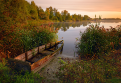 lake, reeds, wood, autumn, old boat, nature wallpaper