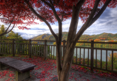 red leaves, bench, mountains, nature wallpaper