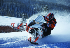 snowmobile, extreme, sport, winter, nature, snow wallpaper