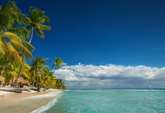 landscape, nature, island, beach, palm trees, sea, summer, clouds, tropical, Vacations wallpaper