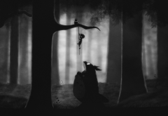 anime, video games, Totoro, My Neighbor Totoro, Limbo wallpaper