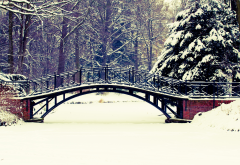 winter, bridge, park, tree, snow, nature wallpaper