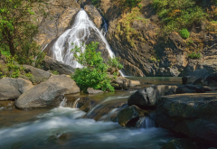 reserve bhagwan mahavir, goa, waterfall, river, nature, india wallpaper