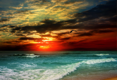 landscape, ocean, sunset, beach, sea, clouds, nature wallpaper