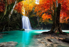 tree, waterfall, nature, landscape, nature, autumn wallpaper
