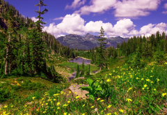 nature, mountains, spring, flowers, clouds wallpaper