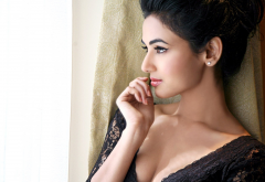 sonal chauhan, girl, brunette, actress, celebrity, bollywood, model wallpaper