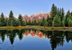 nature, autumn, mountains, forest, tree, sky, reflection, grand teton national park wallpaper