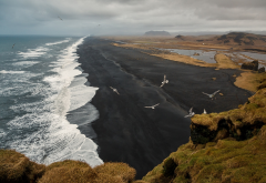 dyrholaey, sea, beach, surf, birds, iceland, nature, black sand wallpaper