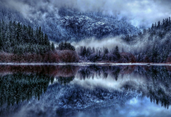 tree, snow, fog, lake, reflection, nature wallpaper