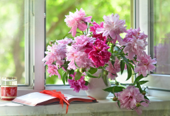 peony, peonies, summer, vase, flowers, book, nature wallpaper