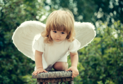 girl, baby, dress, wings, angel, child wallpaper