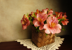 flowers, alstroemeria, basket, napkin wallpaper