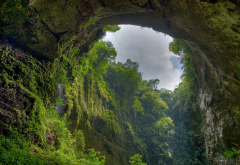 El Yunque, Puerto Rico, nature, landscape, cave, forest, overcast, trees wallpaper