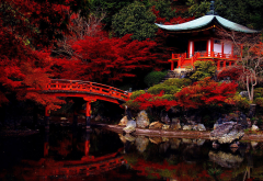 japanese garden, temple, lake, garden, pond, japan, autumn wallpaper