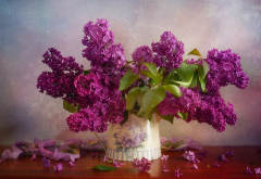 lilac, flowers, bouquet, petals wallpaper