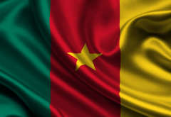 flag, cameroon, flag of cameroon wallpaper