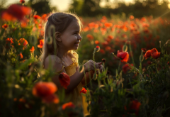 girl, flowers, sun, poppies, poppy, little girl, smile wallpaper